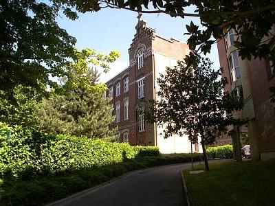 STUDIO A LOUER - LILLE GAMBETTA - 19,14 m2 - 405 € charges comprises par mois